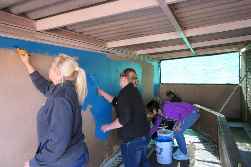 volunteer-gallery5